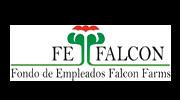 FEFALCON